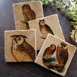 Owl coasters - Keepers of the Forest
